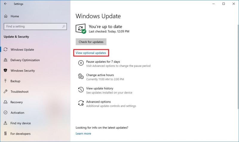 通過 Windows 更新設置更新 USB 驅動程序以在不格式化的情況下修復損壞的閃存驅動器
